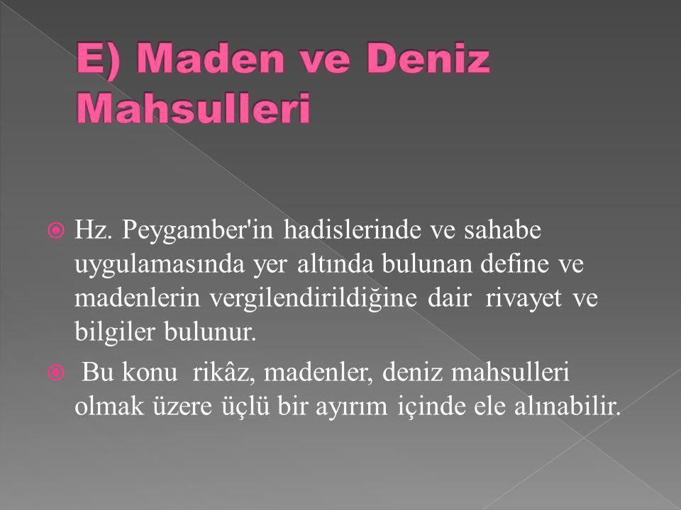 E) Maden ve Deniz Mahsulleri