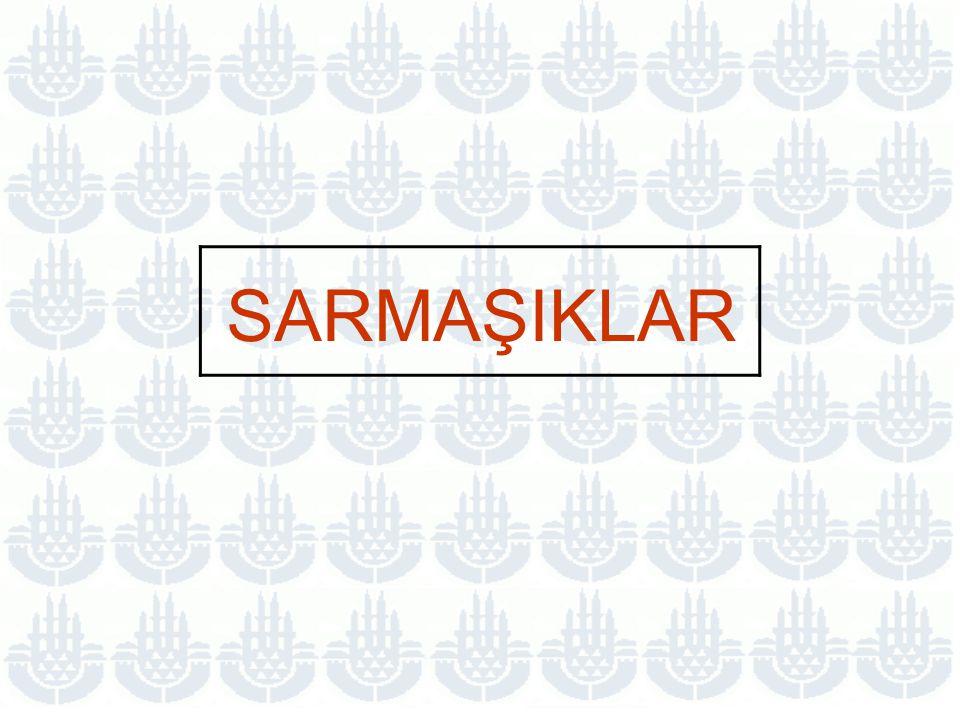 SARMAŞIKLAR