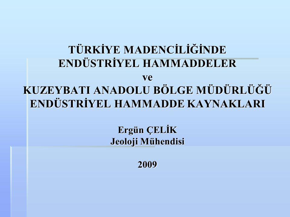 TÜRKİYE MADENCİLİĞİNDE ENDÜSTRİYEL HAMMADDELER ve KUZEYBATI ANADOLU BÖLGE MÜDÜRLÜĞÜ ENDÜSTRİYEL HAMMADDE KAYNAKLARI Ergün ÇELİK Jeoloji Mühendisi 2009