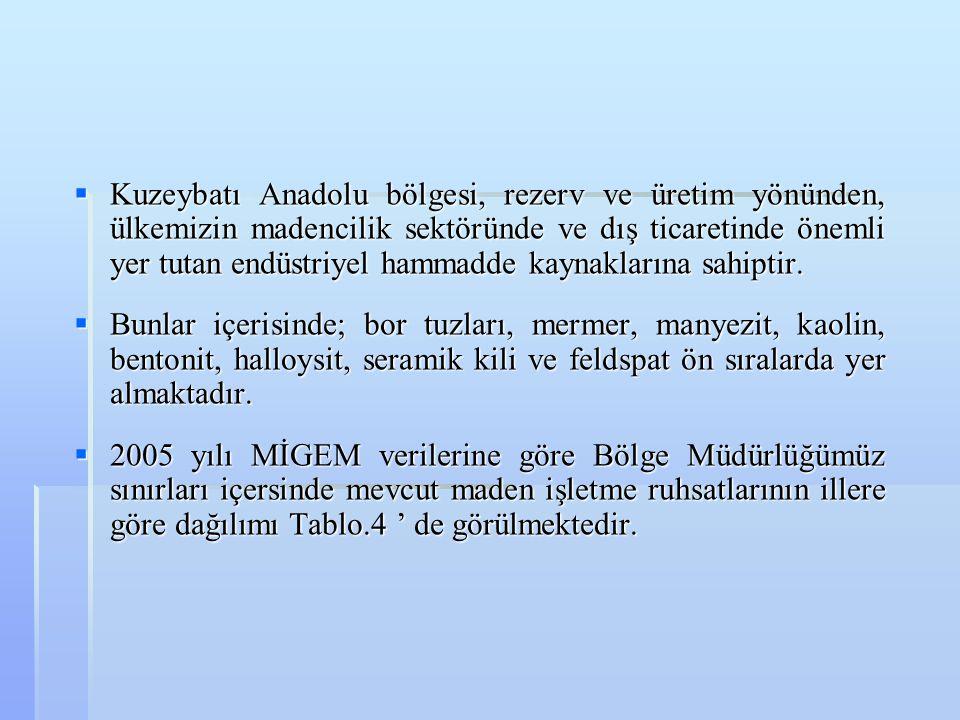 Kuzeybatı Anadolu bölgesi, rezerv ve üretim yönünden, ülkemizin madencilik sektöründe ve dış ticaretinde önemli yer tutan endüstriyel hammadde kaynaklarına sahiptir.