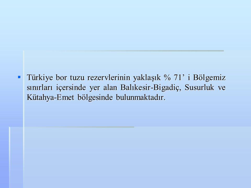 Türkiye bor tuzu rezervlerinin yaklaşık % 71' i Bölgemiz sınırları içersinde yer alan Balıkesir-Bigadiç, Susurluk ve Kütahya-Emet bölgesinde bulunmaktadır.