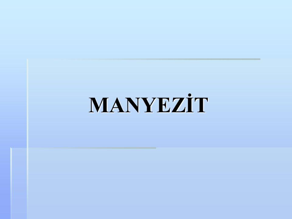 MANYEZİT