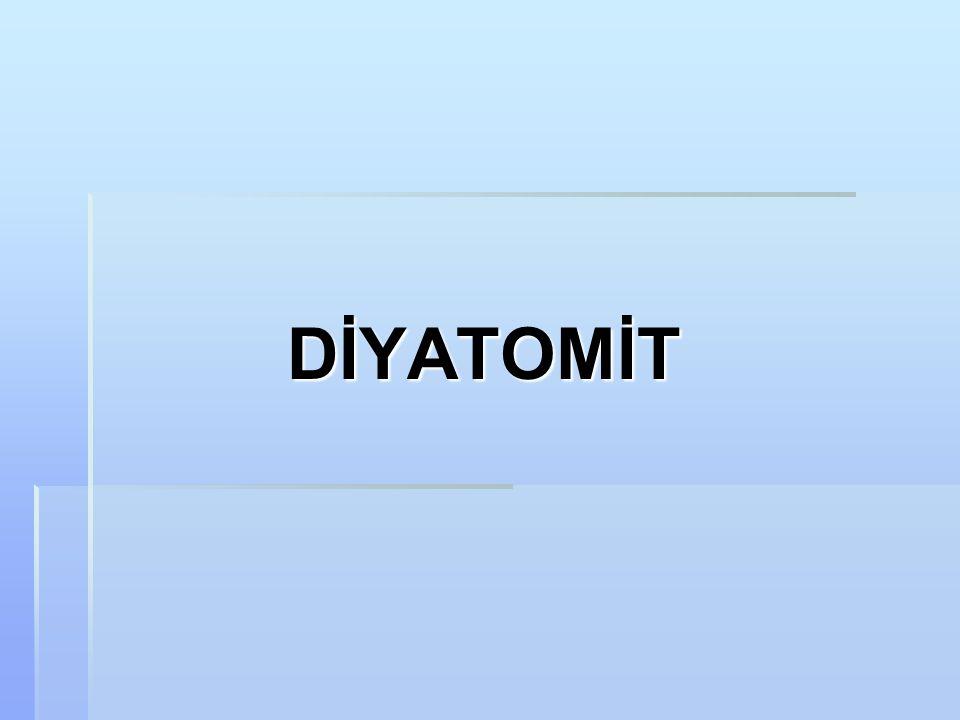 DİYATOMİT