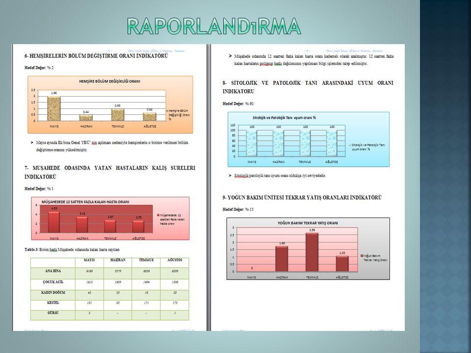 raporlandırma