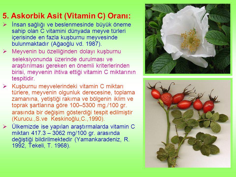 5. Askorbik Asit (Vitamin C) Oranı: