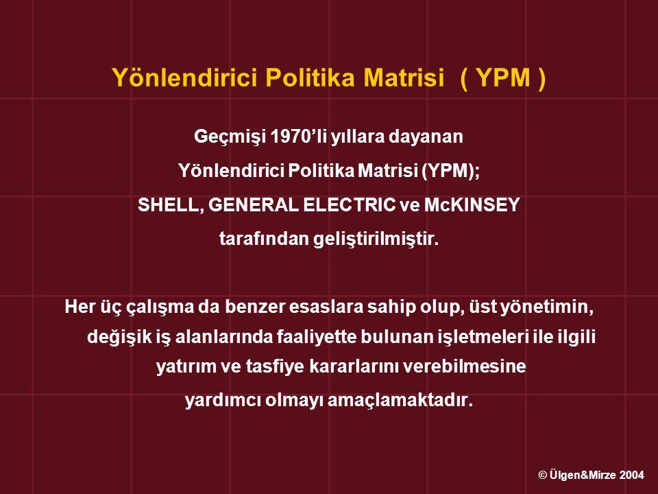 Yönlendirici Politika Matrisi ( YPM )