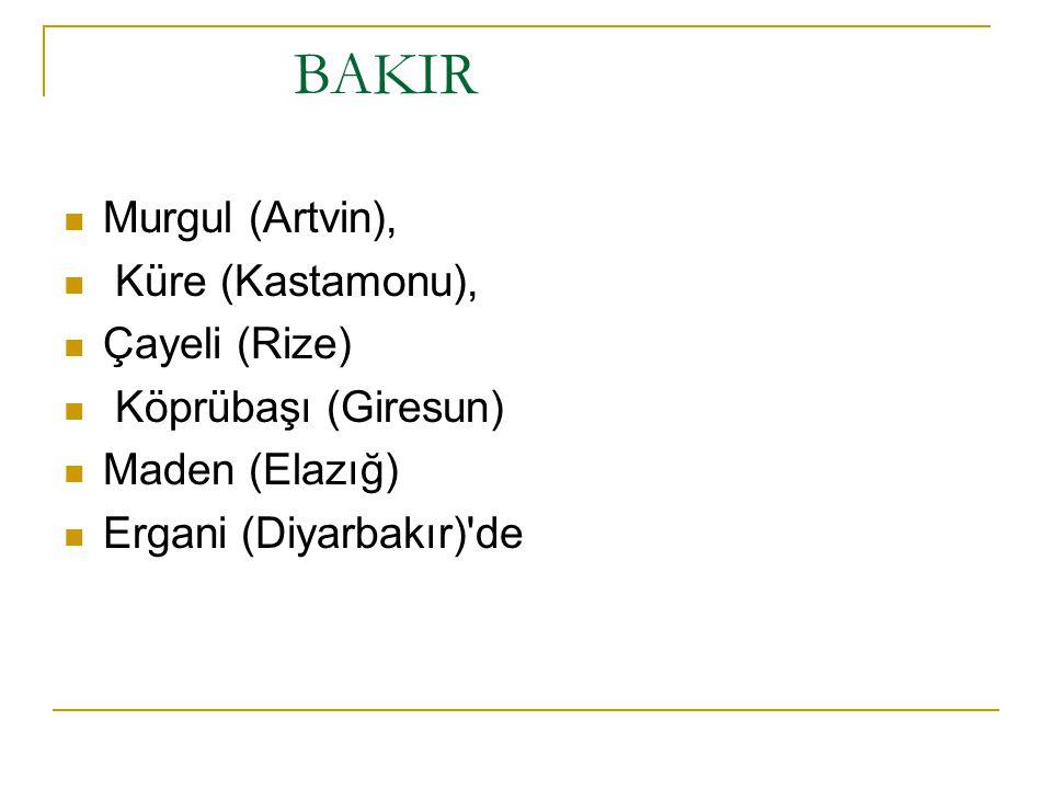BAKIR Murgul (Artvin), Küre (Kastamonu), Çayeli (Rize)