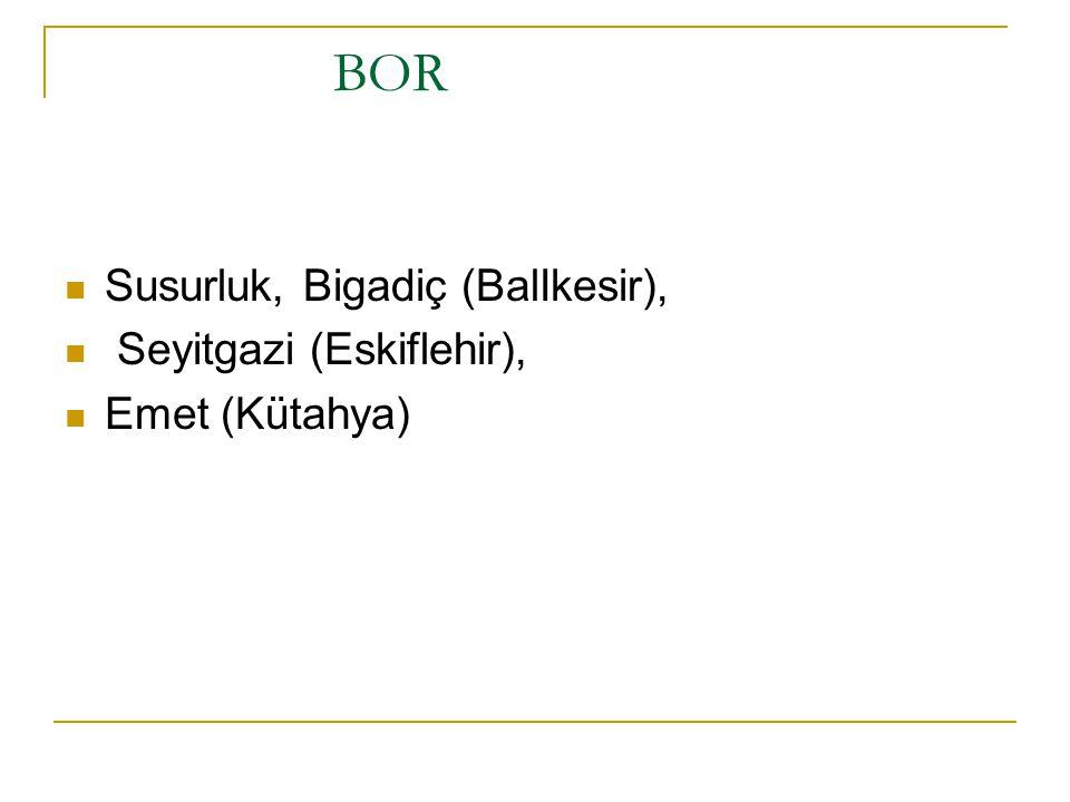 BOR Susurluk, Bigadiç (BalIkesir), Seyitgazi (Eskiflehir),