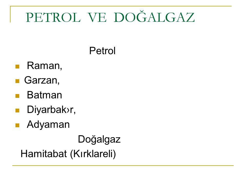 PETROL VE DOĞALGAZ Petrol Raman, Garzan, Batman Diyarbak›r, Adyaman