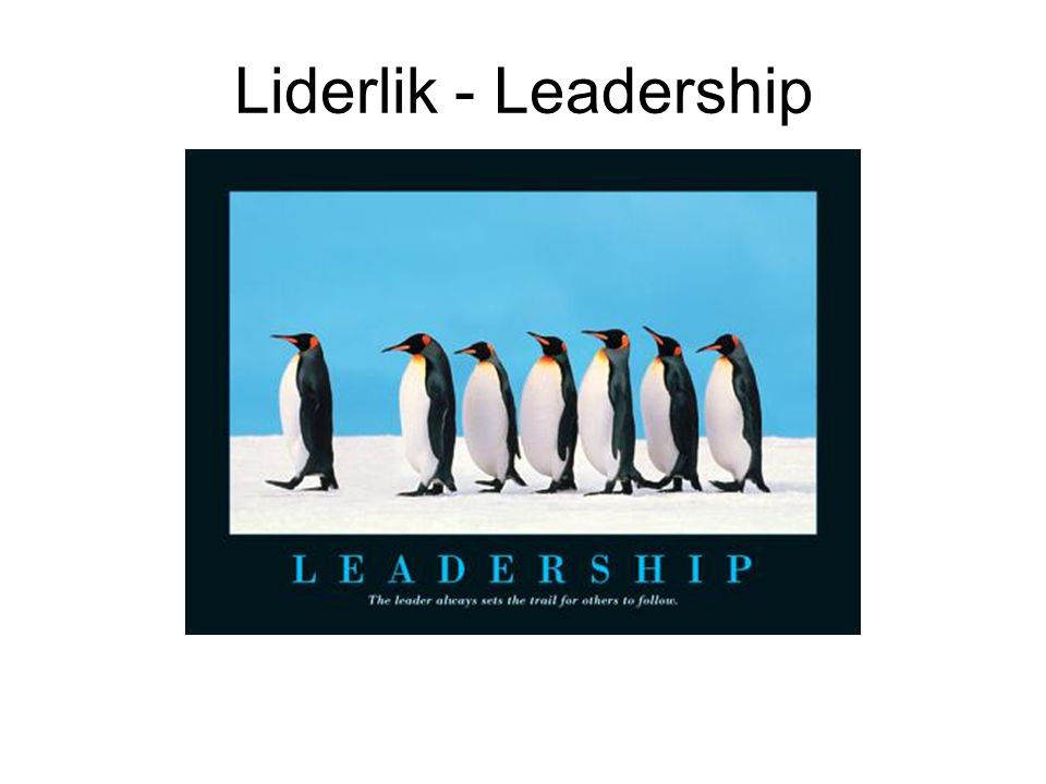 Liderlik - Leadership