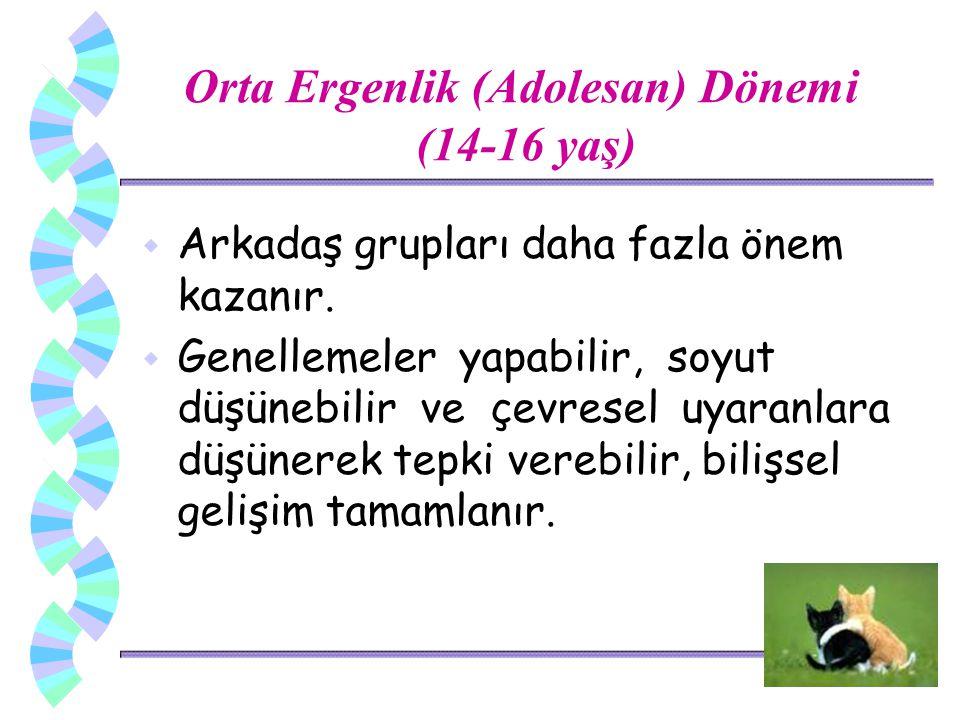Orta Ergenlik (Adolesan) Dönemi (14-16 yaş)