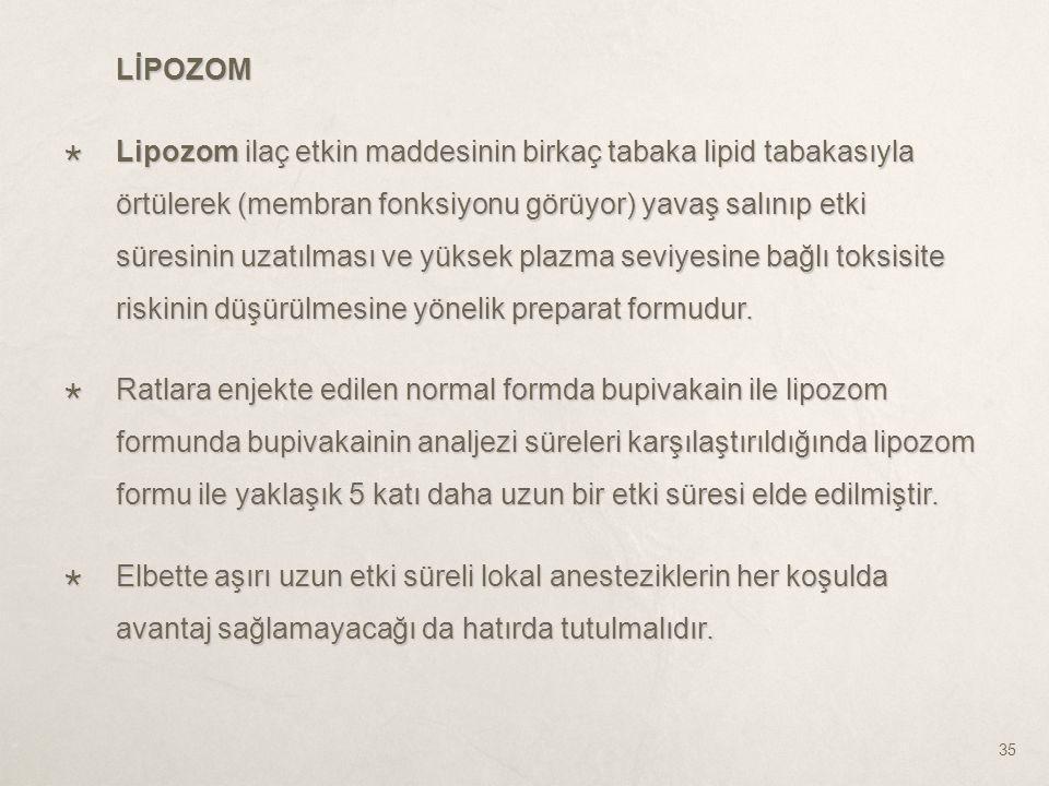 LİPOZOM