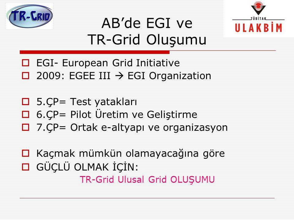AB'de EGI ve TR-Grid Oluşumu