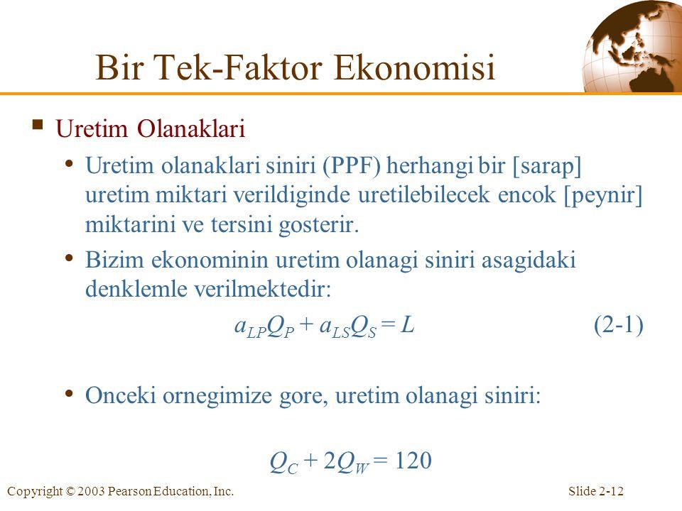 Bir Tek-Faktor Ekonomisi