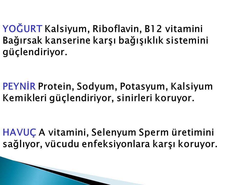 YOĞURT Kalsiyum, Riboflavin, B12 vitamini Bağırsak kanserine karşı bağışıklık sistemini güçlendiriyor.