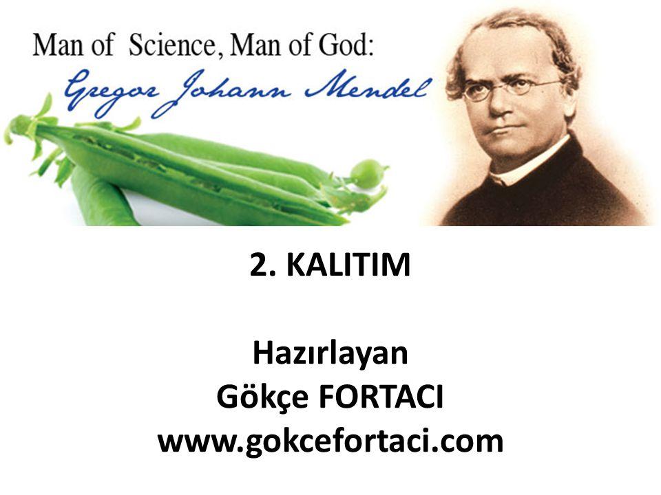 2. KALITIM Hazırlayan Gökçe FORTACI www.gokcefortaci.com