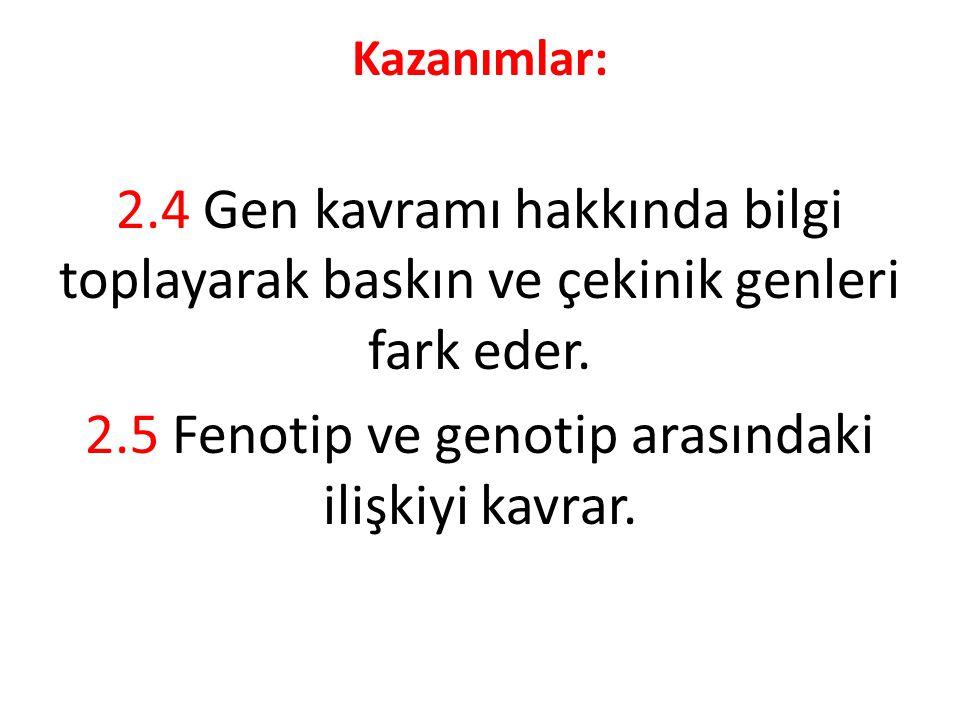 2.5 Fenotip ve genotip arasındaki ilişkiyi kavrar.