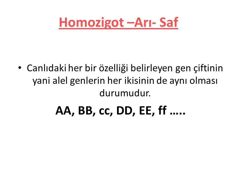 Homozigot –Arı- Saf AA, BB, cc, DD, EE, ff …..