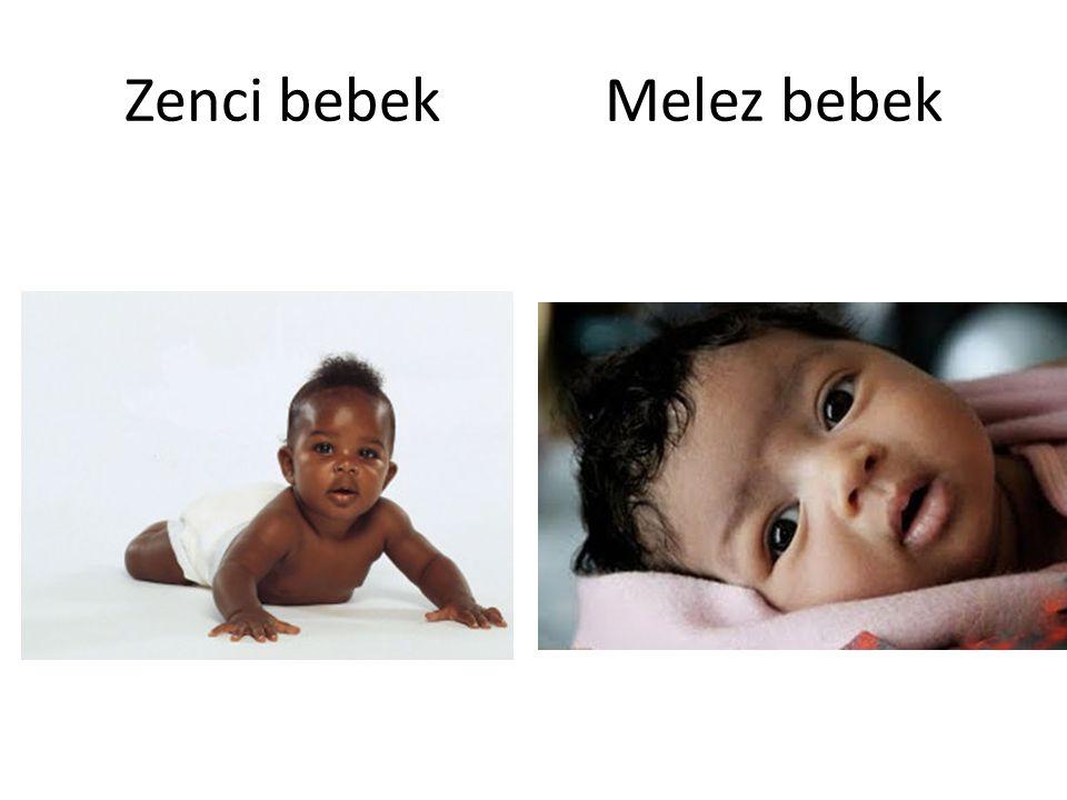 Zenci bebek Melez bebek