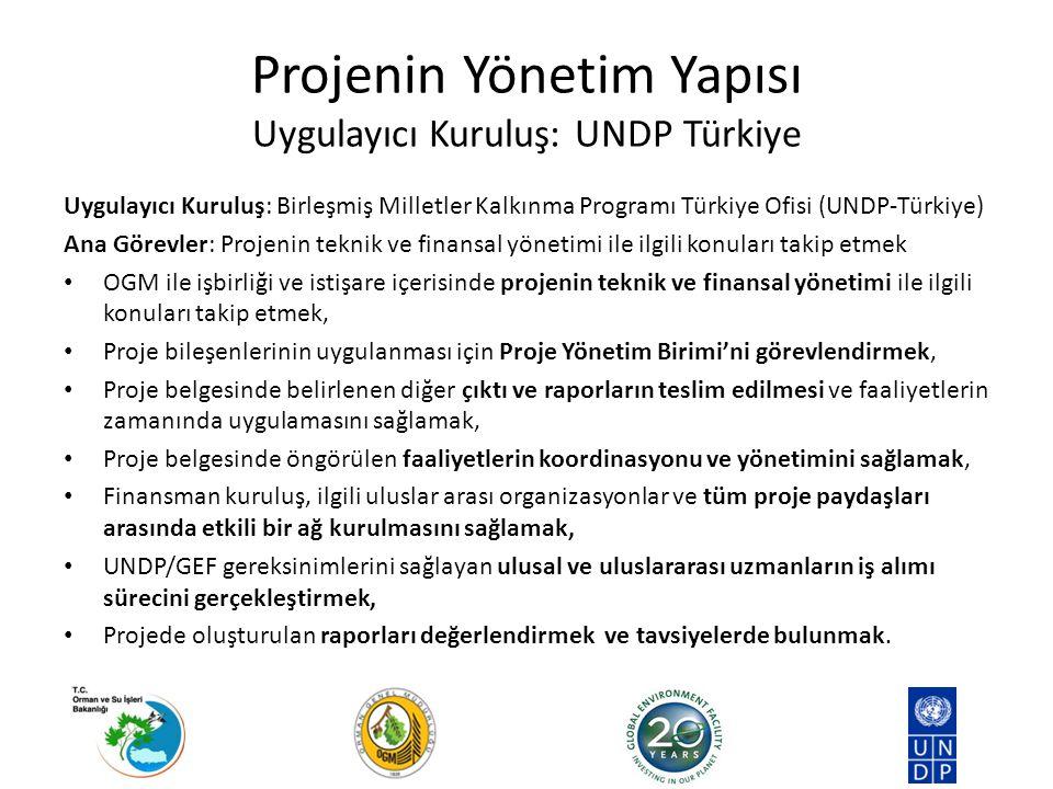 Projenin Yönetim Yapısı Uygulayıcı Kuruluş: UNDP Türkiye