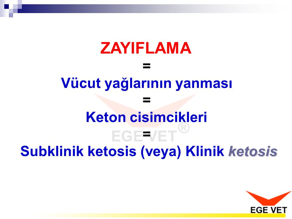 Vücut yağlarının yanması = Subklinik ketosis (veya) Klinik ketosis