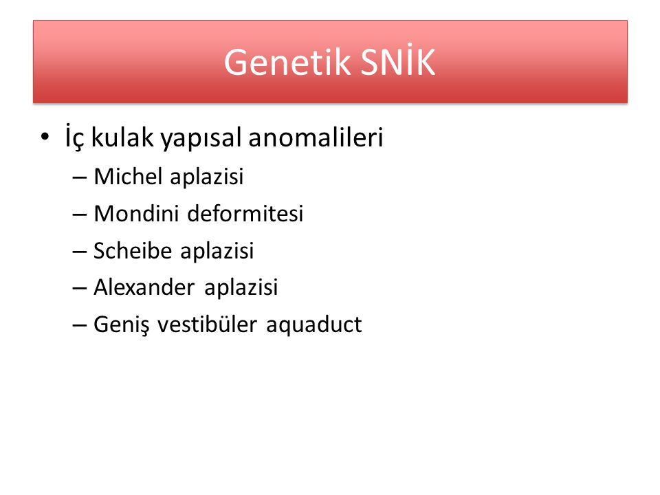 Genetik SNİK İç kulak yapısal anomalileri Michel aplazisi