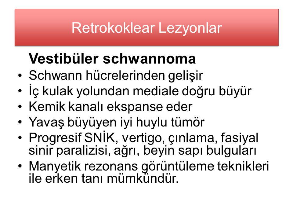Retrokoklear Lezyonlar