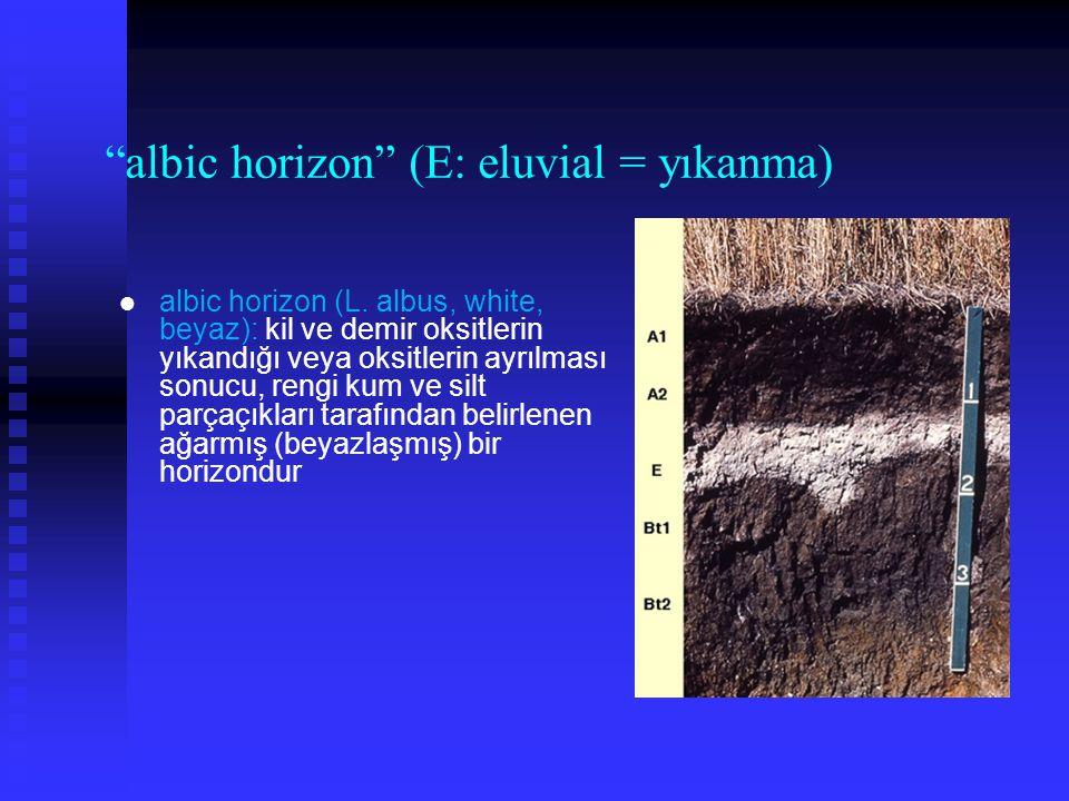 albic horizon (E: eluvial = yıkanma)