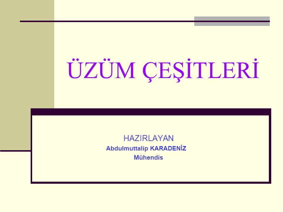 HAZIRLAYAN Abdulmuttalip KARADENİZ Mühendis