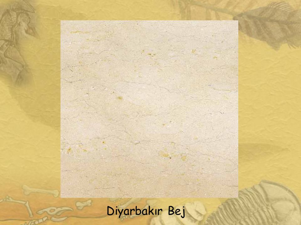 1111 Diyarbakır Bej