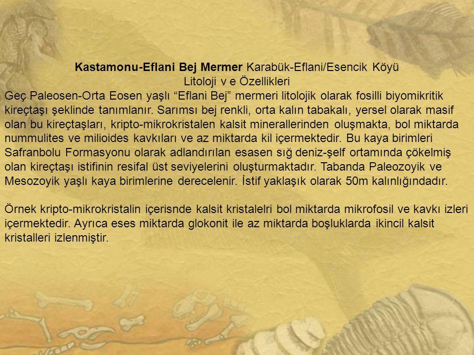 Kastamonu-Eflani Bej Mermer Karabük-Eflani/Esencik Köyü
