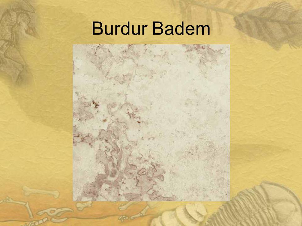 1919 Burdur Badem