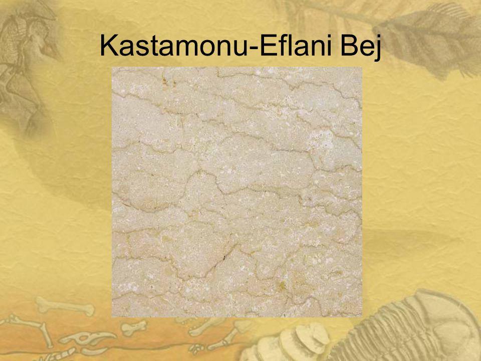 2020 Kastamonu-Eflani Bej