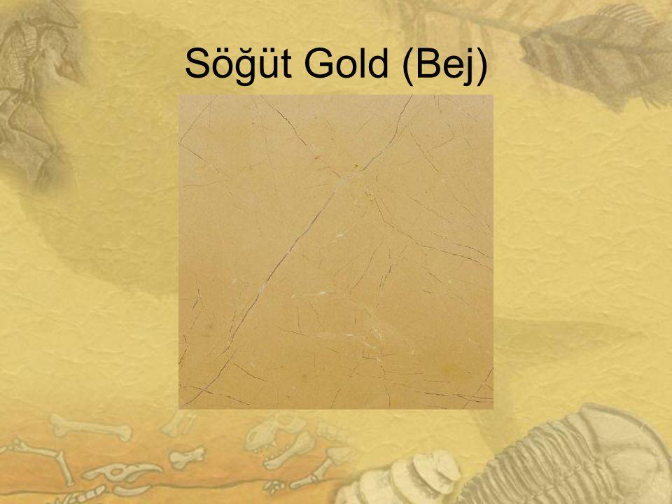 2323 Söğüt Gold (Bej)