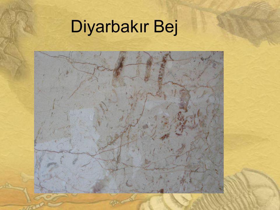 2525 Diyarbakır Bej