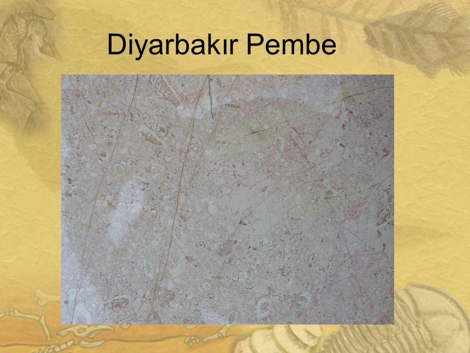 2626 Diyarbakır Pembe