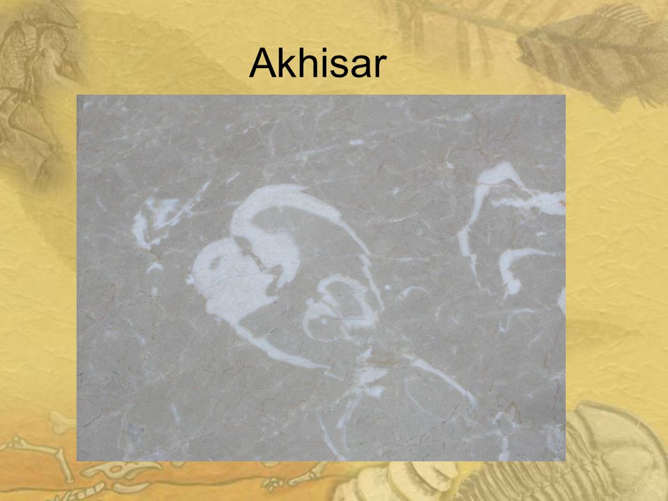 3232 Akhisar