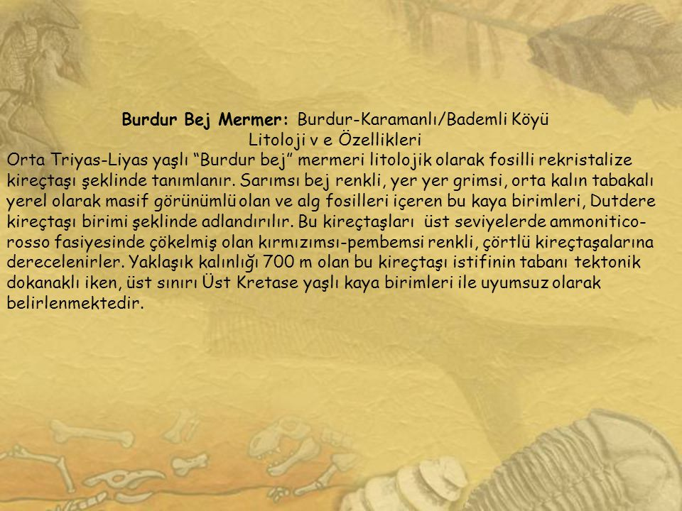 Burdur Bej Mermer: Burdur-Karamanlı/Bademli Köyü