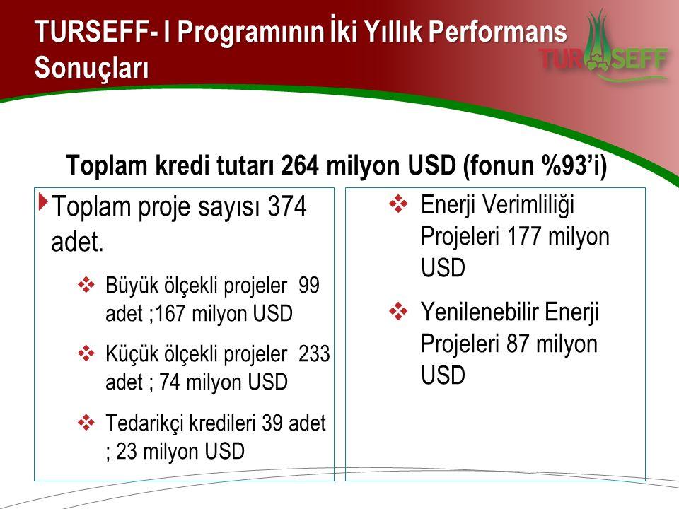 TURSEFF- I Programının İki Yıllık Performans Sonuçları