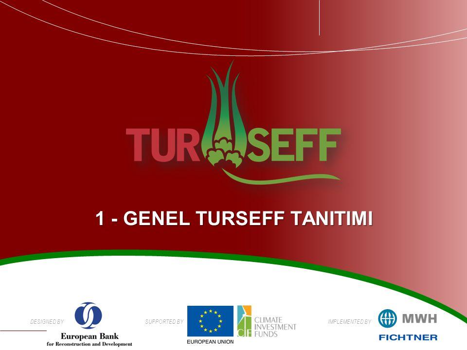 1 - GENEL TURSEFF TANITIMI