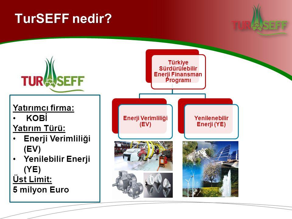 TurSEFF nedir Yatırımcı firma: KOBİ Yatırım Türü: