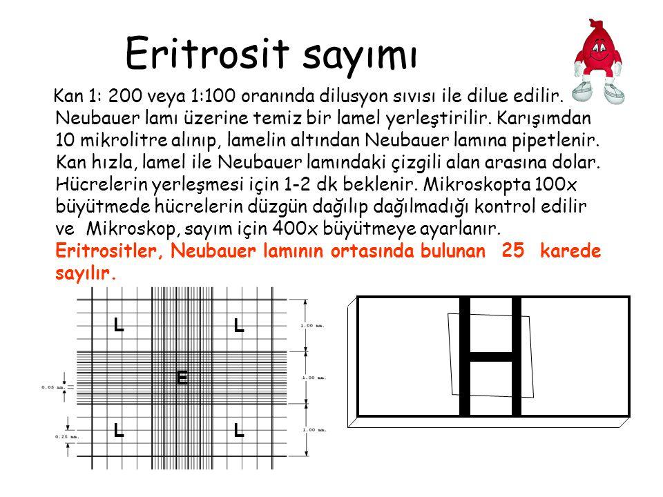 Eritrosit sayımı