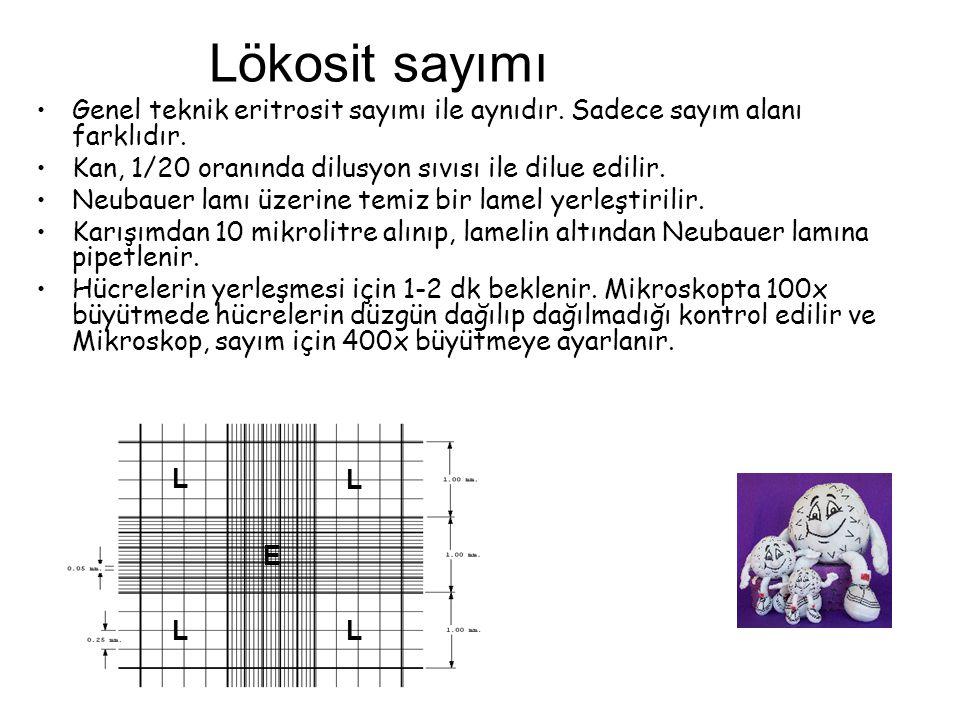 Lökosit sayımı Genel teknik eritrosit sayımı ile aynıdır. Sadece sayım alanı farklıdır. Kan, 1/20 oranında dilusyon sıvısı ile dilue edilir.