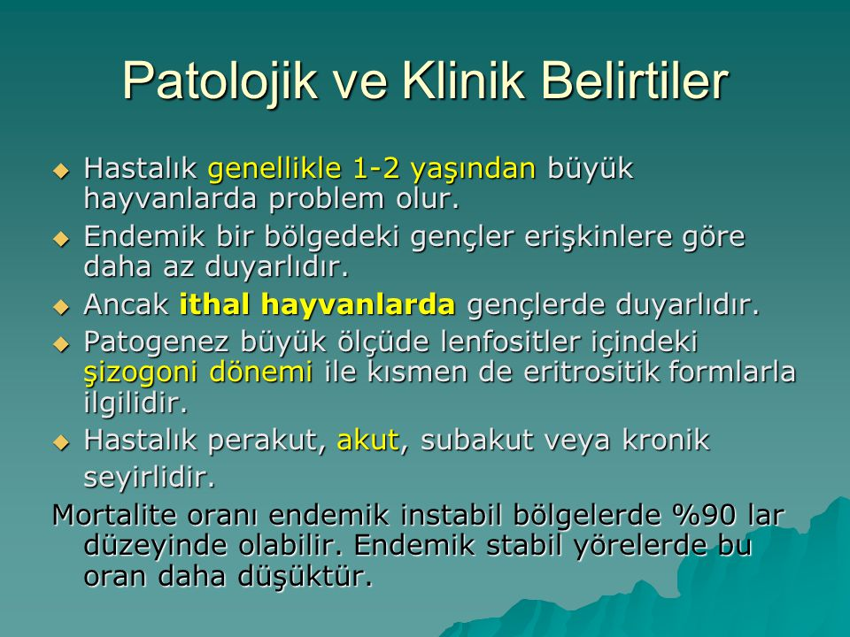 Patolojik ve Klinik Belirtiler