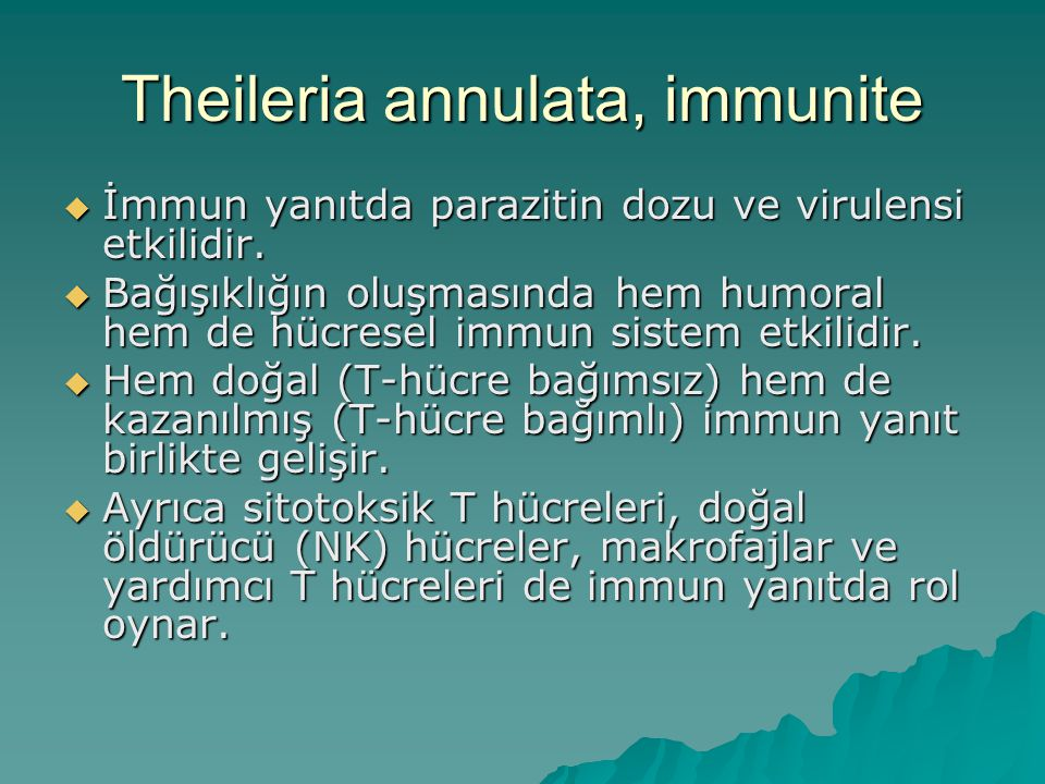 Theileria annulata, immunite