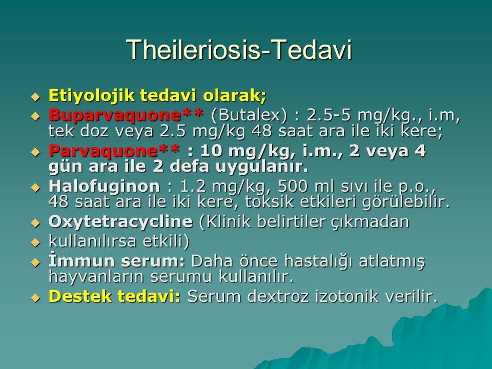 Theileriosis-Tedavi Etiyolojik tedavi olarak;
