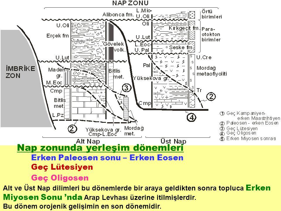 Nap zonunda yerleşim dönemleri