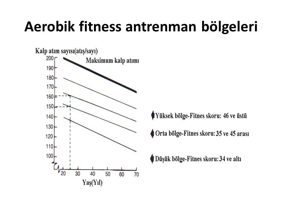 Aerobik fitness antrenman bölgeleri