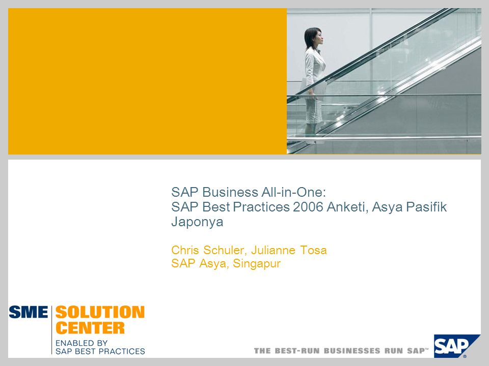 SAP Business All-in-One: