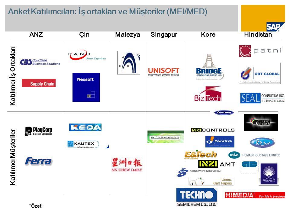 Anket Katılımcıları: İş ortakları ve Müşteriler (MEI/MED)